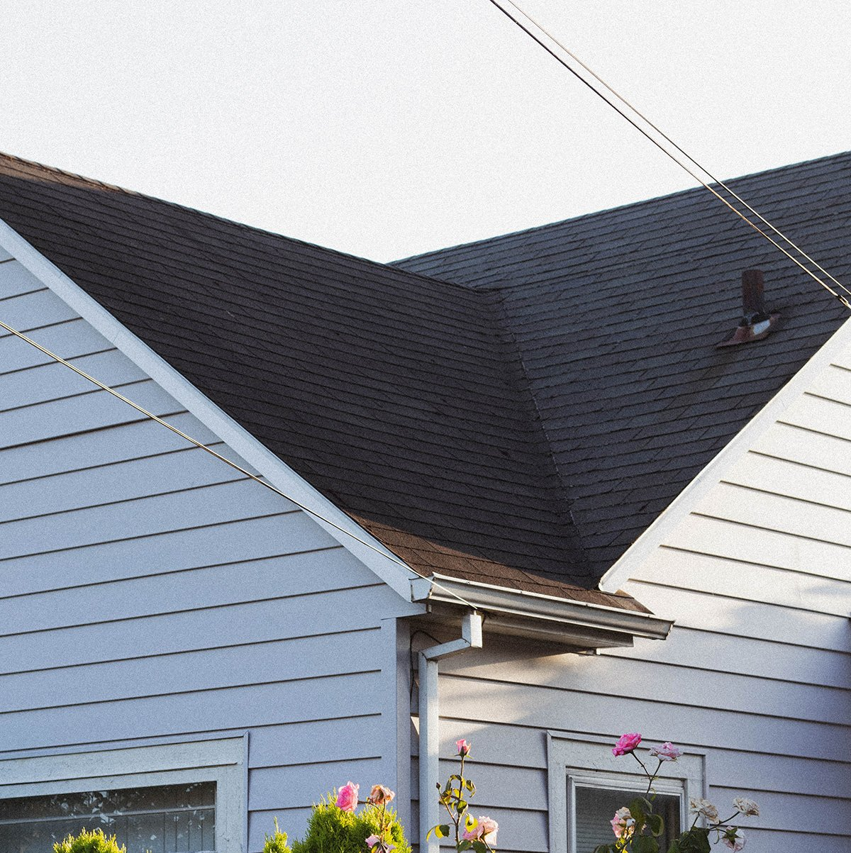 Roof Storm Damage Repair and Insurance with Moose Roofing